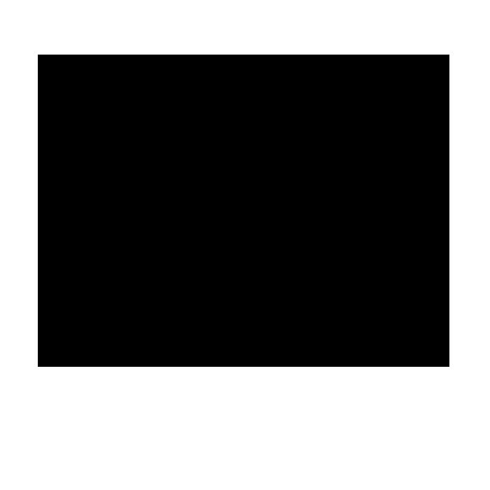 noun_176555_cc